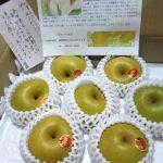 【新甘泉】早生で一番甘い&ジューシーな新品種の梨~!旬は短いっ=3
