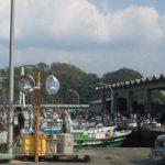 和歌山 雑賀崎漁協の鮮魚直売のアクセスや概要。お出かけ前はお電話で確認を!