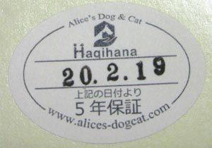 犬用ハーネス13